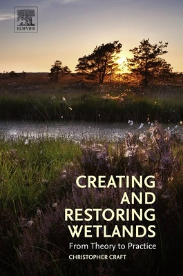 Creating and restoring wetlands : from theory to practice