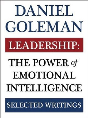 Leadership : the power of emotional intelligence