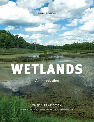 Wetlands: an introduction by Theda Braddock and Diane Hennessey